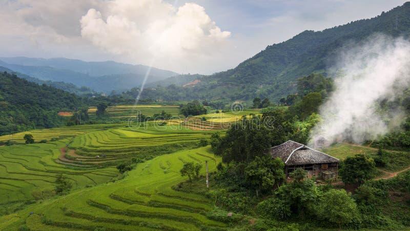 Landskap för odlingsfält arkivbilder