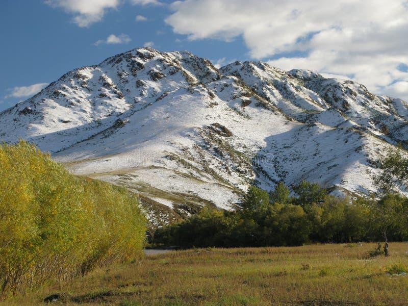 Landskap för Selenge flod - Mongoliet arkivbilder