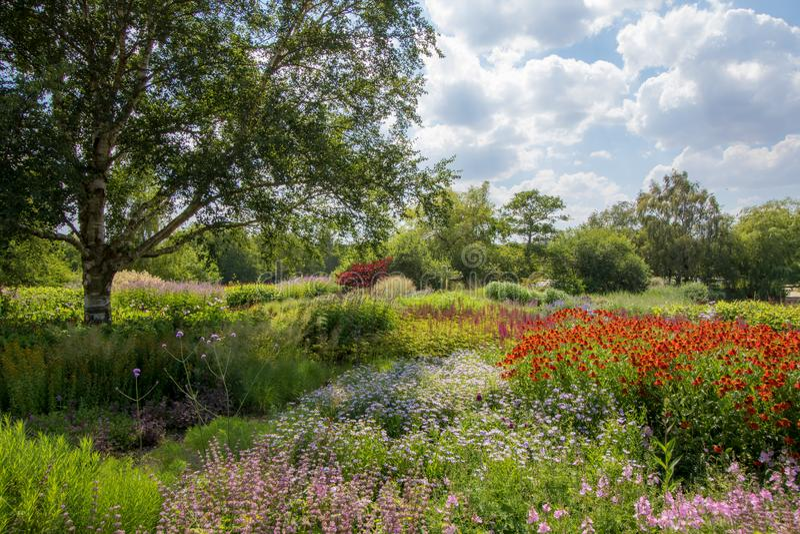 Landskap för sommarlandsträdgård Härlig färgrik trädgårdsnäring royaltyfria bilder