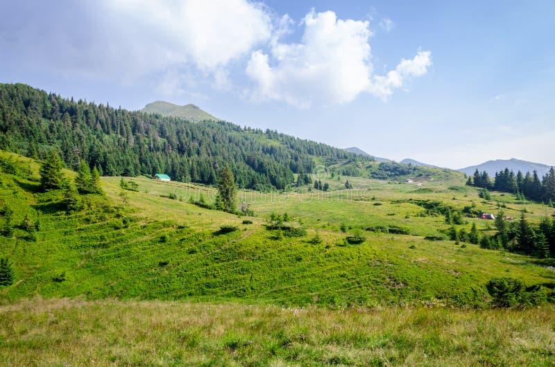 Landskap gröna berg arkivfoton