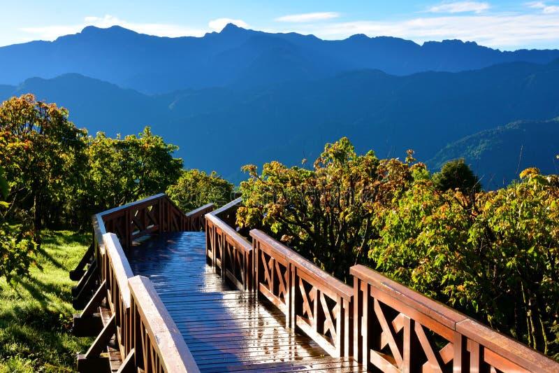 Landskap i Alishan Taiwan arkivfoton
