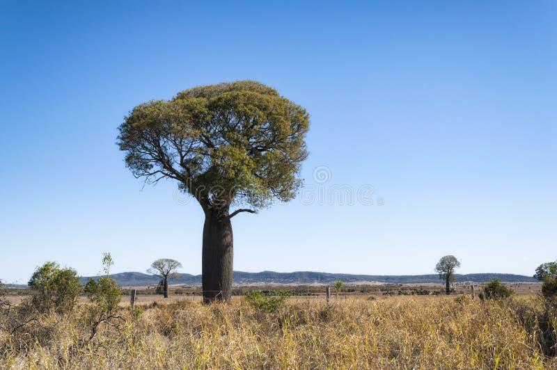 landskap i Australien arkivfoton