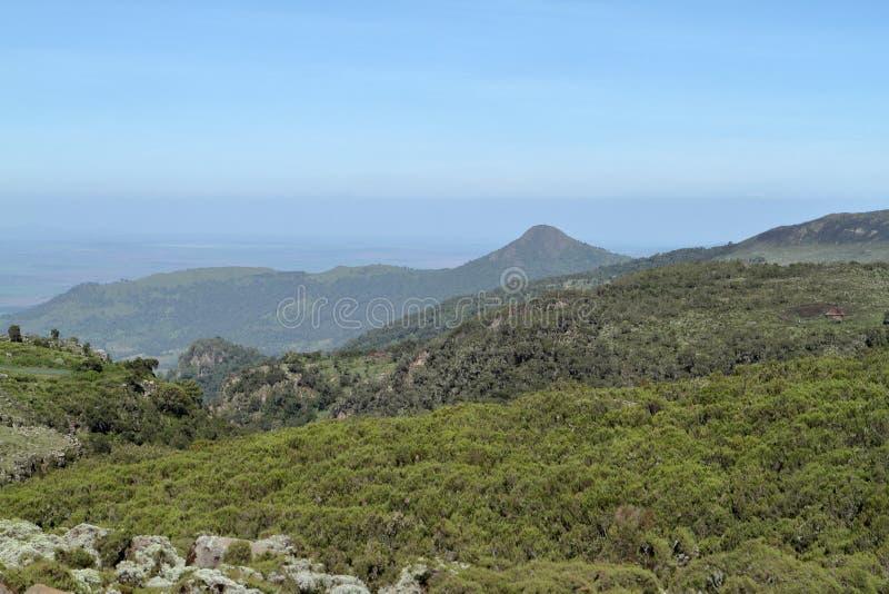Landskap i balbergen av Etiopien arkivbild