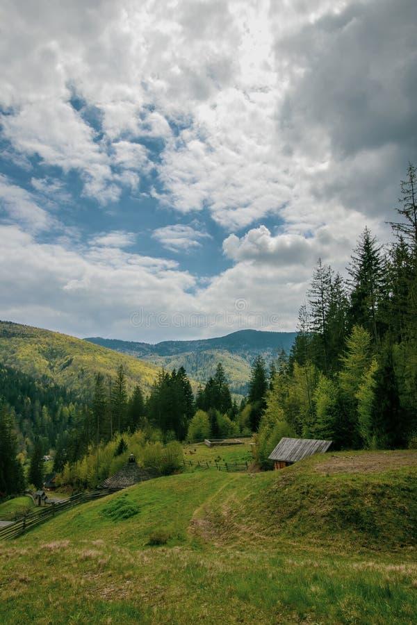 Landskap i bergen av Yaremche, Carpathians, Ukraina Berghimmelmoln H?rligt alpint landskap ?pplet clouds treen f?r sunen f?r natu arkivfoto