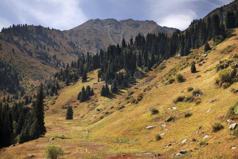 Landskap i den Medeu dalen kazakhstan fotografering för bildbyråer