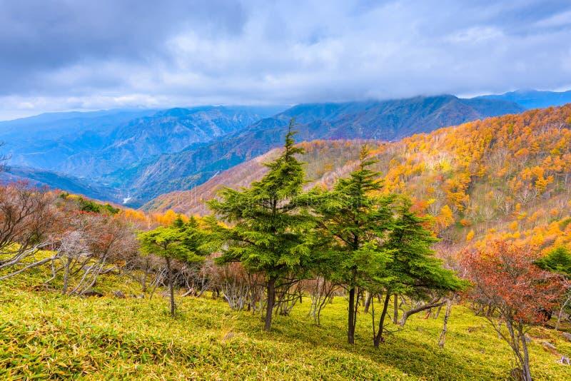 Landskap i den Nikko nationalparken i Tochigi, Japan arkivbilder