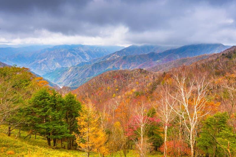 Landskap i den Nikko nationalparken i Tochigi, Japan fotografering för bildbyråer