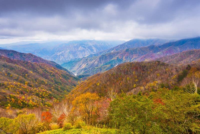 Landskap i den Nikko nationalparken i Tochigi, Japan royaltyfri fotografi