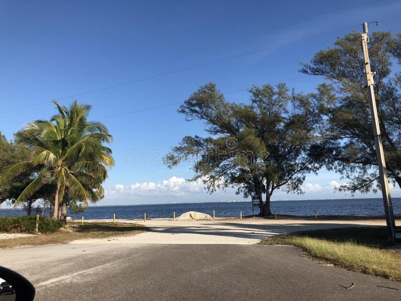 Landskap i Florida royaltyfri bild
