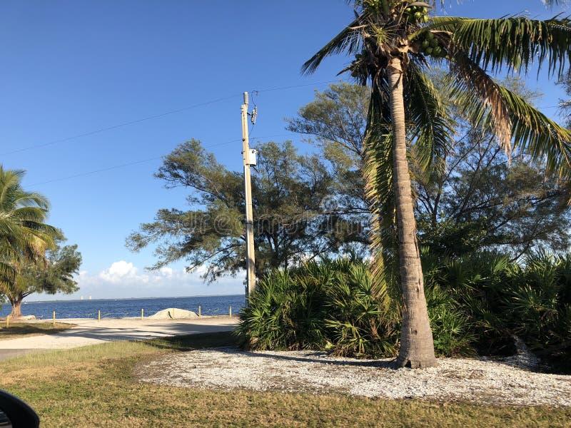 Landskap i Florida arkivfoto