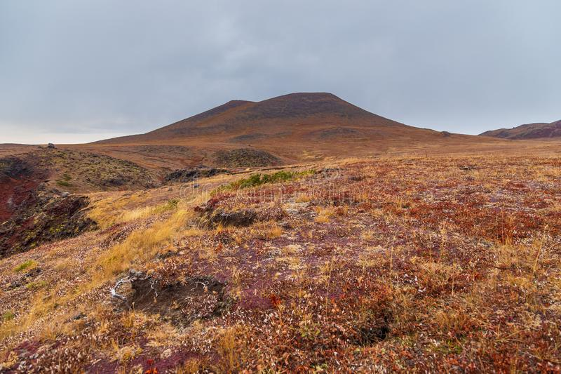 Landskap i höstfärger, halvö Kamchatka, Ryssland arkivfoton