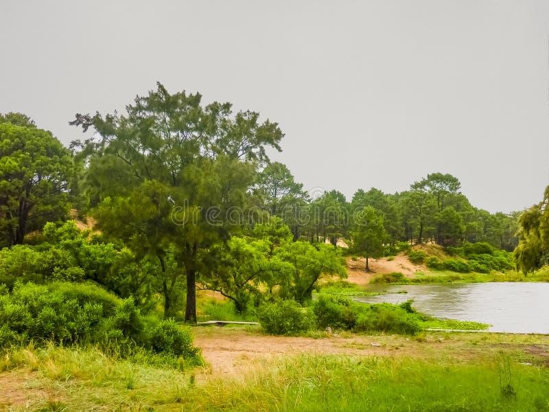 Landskap i Laguna del Sås Maldonado Uruguay arkivfoton