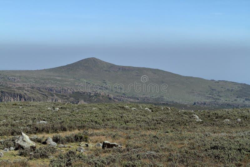 Landskap i nationalparkbalbergen i Etiopien arkivfoto