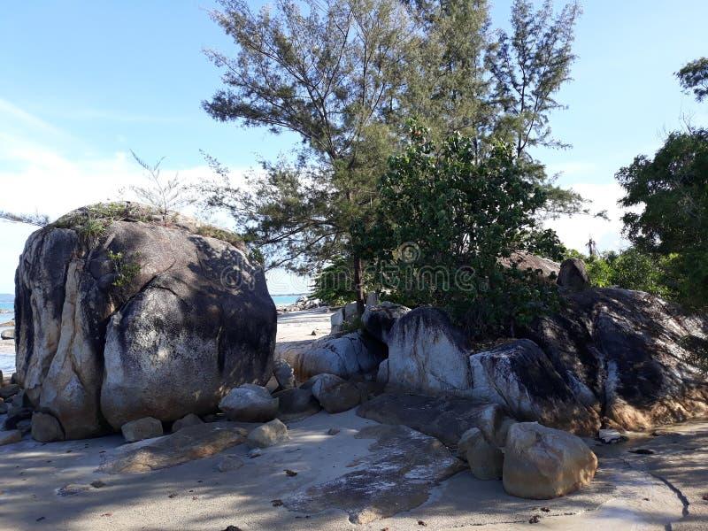 Landskap i stranden Parai Tenggiri arkivfoto