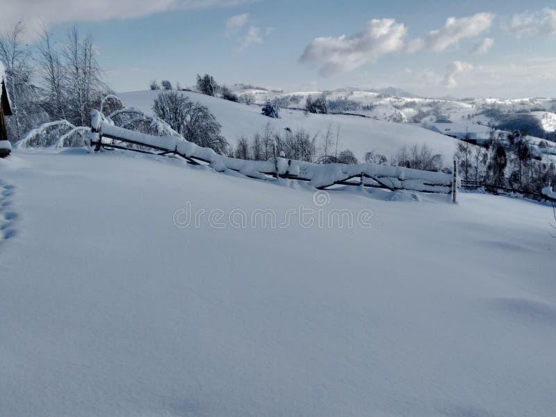 Landskap i vinter med monteringen och snö-laden träd i by av Parva, Rumänien, Transylvania arkivbild
