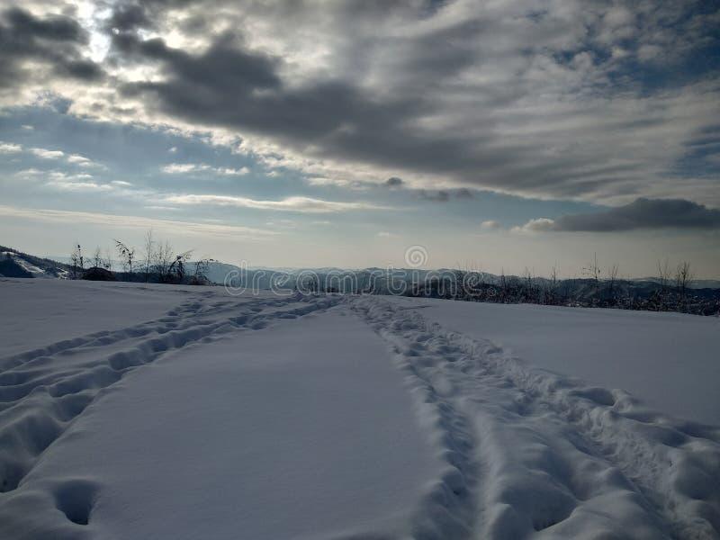 Landskap i vinter med monteringen och snö-laden träd i by av Parva, Rumänien, Transylvania royaltyfri foto