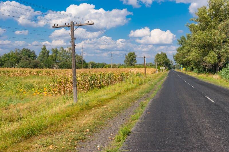 Landskap med asfaltvägen som leder till den lilla byn Rublivka i Poltavskaya oblast, Ukraina royaltyfri bild