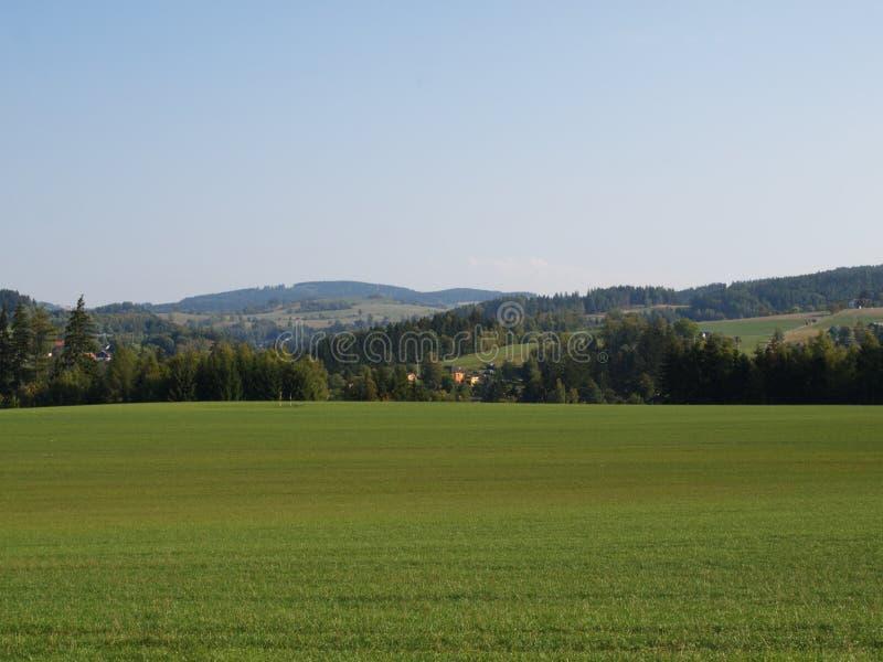 Landskap med berget närliggande Zamberk, tjeckisk RepubliÑ , sommar 2018 fotografering för bildbyråer