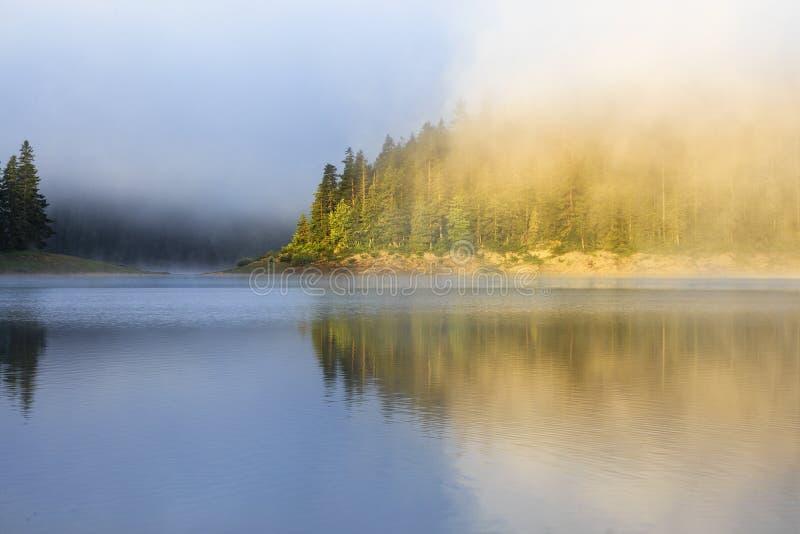 Landskap med den bergskogen, dimma och sjön i morgon arkivbild