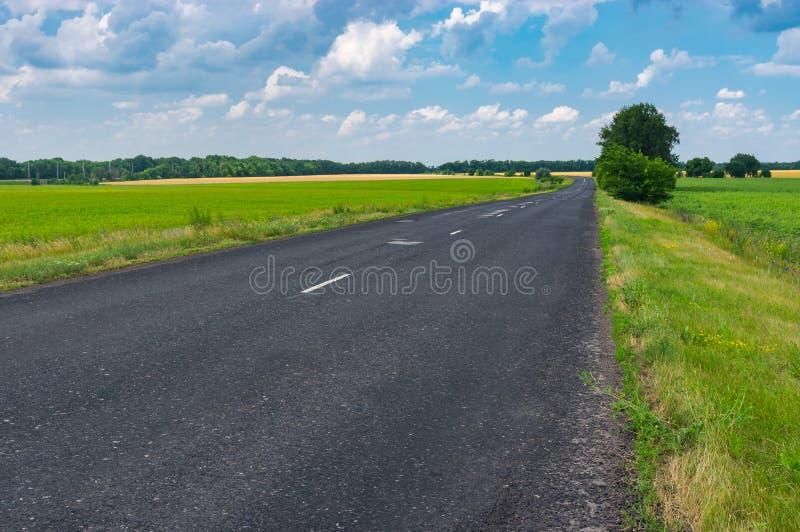 Landskap med den lantliga vägen för asfalt i centrala Ukraina royaltyfria bilder