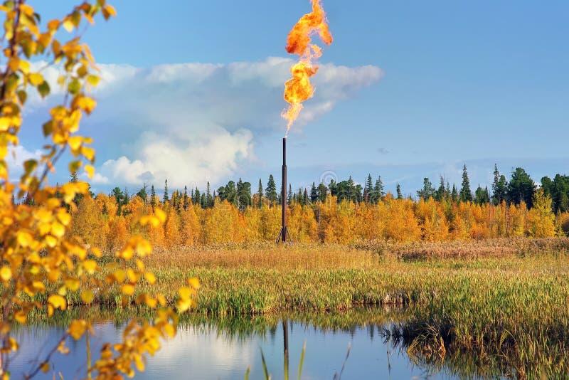 Landskap med den olje- facklan royaltyfria foton