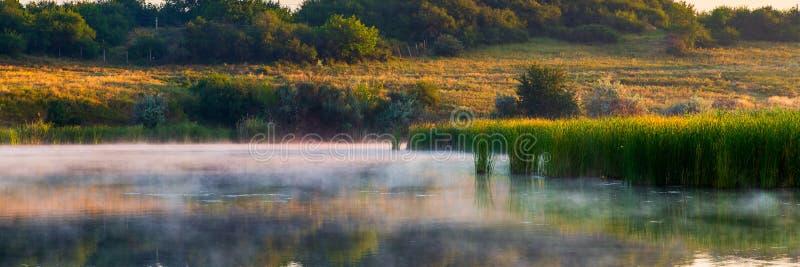 Landskap med dimmig morgon på sjön eller dammet royaltyfri bild