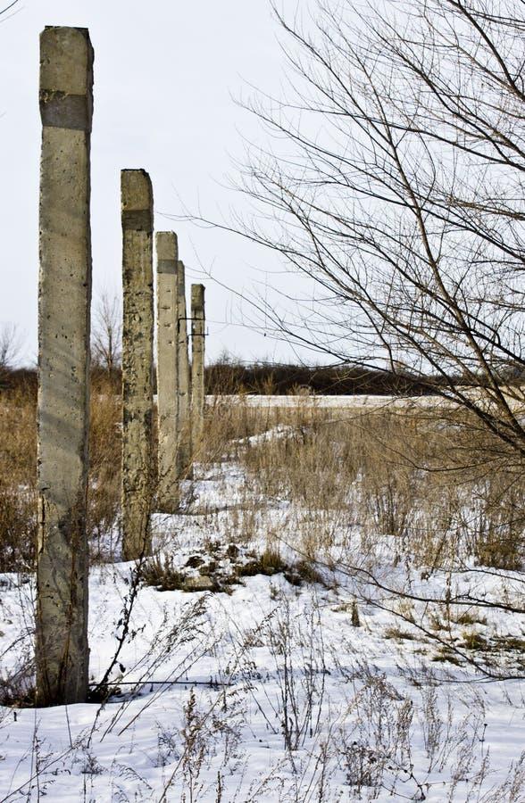 Landskap med djurliv och pelare i rad arkivfoto