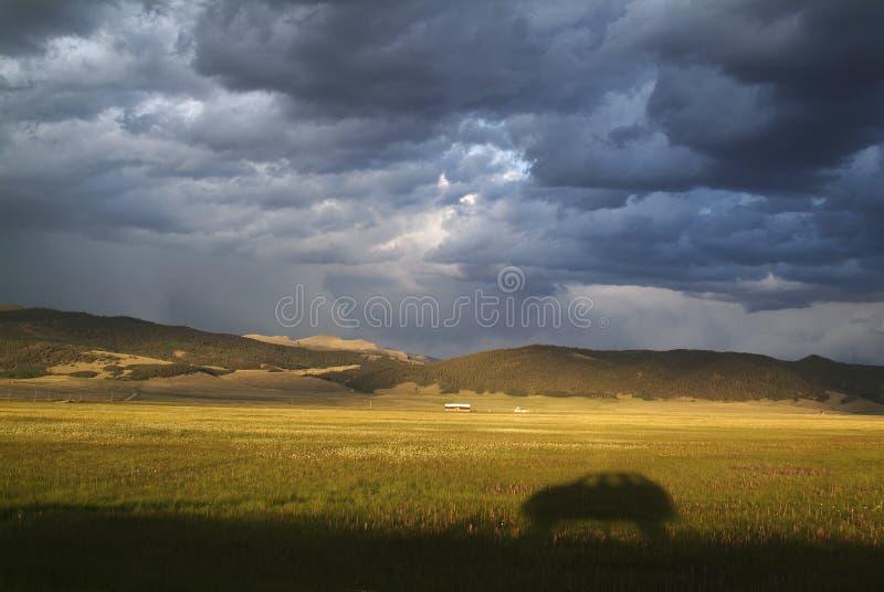 Landskap med en bilskugga och en stormig himmel arkivbild