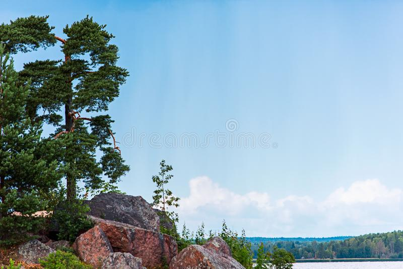 Landskap med ett träd på en kulle bland stenar royaltyfri foto