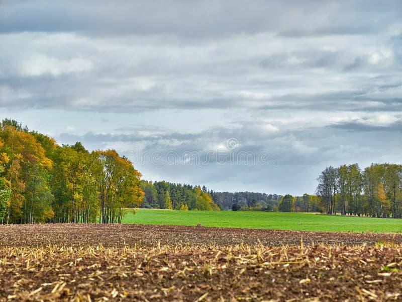 Landskap med fält och moln arkivbilder