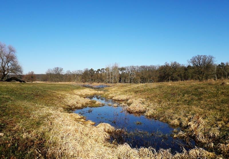 Landskap med floden, för precis våren kommer royaltyfri fotografi