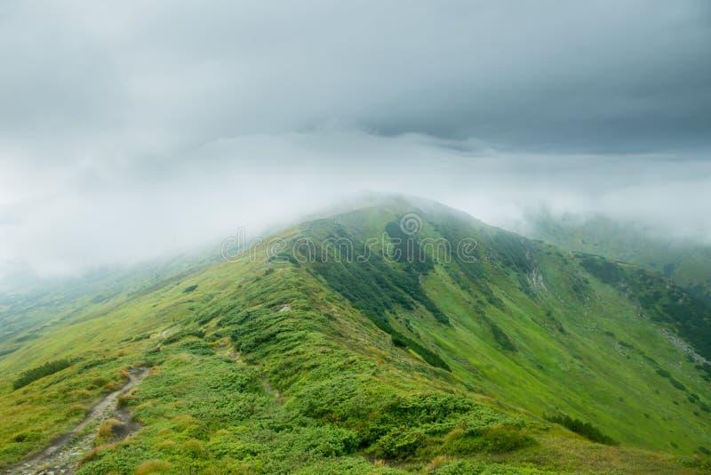 Landskap med gröna berg i molnen arkivfoto