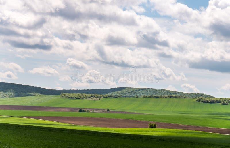 Landskap med ?kerbruka f?lt och gr?nomr?den p? en Sunny Day med molnig himmel fotografering för bildbyråer