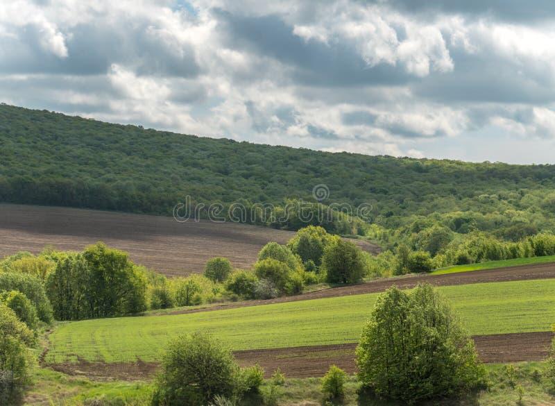 Landskap med ?kerbruka f?lt och gr?nomr?den p? en Sunny Day med molnig himmel royaltyfri foto