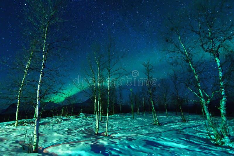Landskap med norrsken royaltyfri fotografi