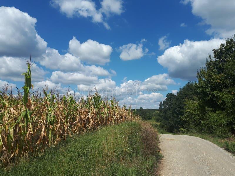 landskap med pösiga moln arkivbild