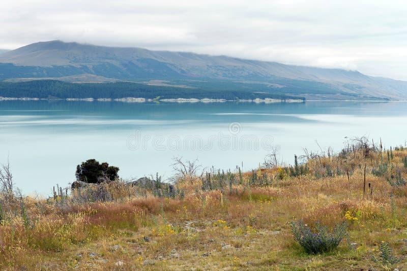 Landskap med sjön i söderna av Nya Zeeland royaltyfria foton