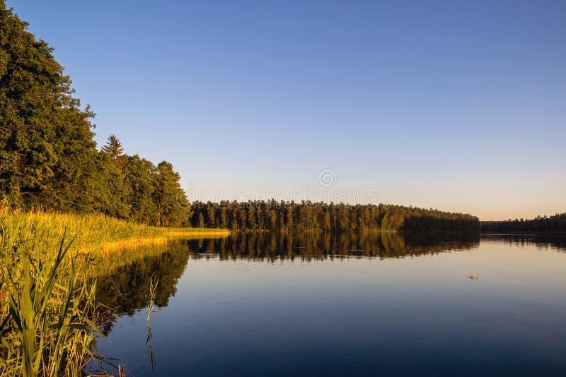 Landskap med sjön i sommar blå sky royaltyfria bilder