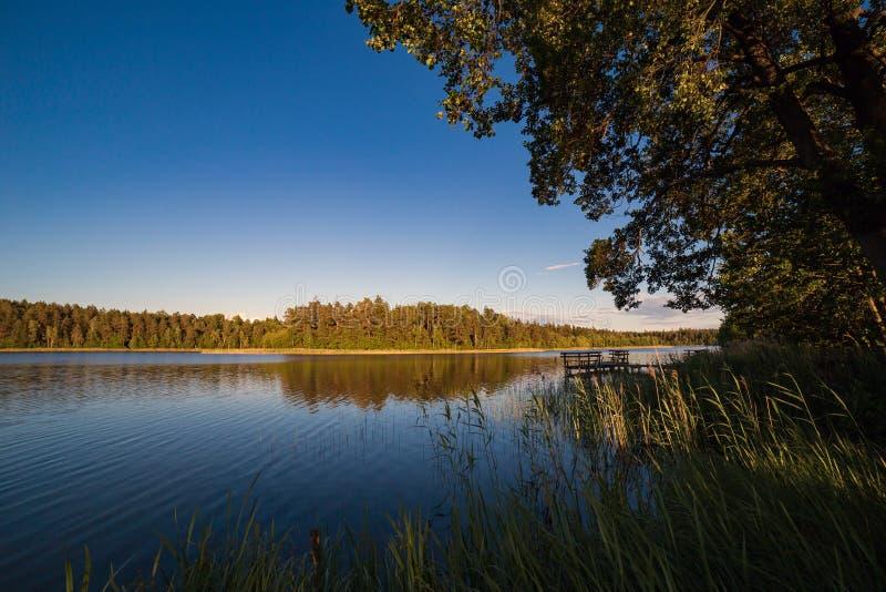 Landskap med sjön i sommar blå sky arkivfoton
