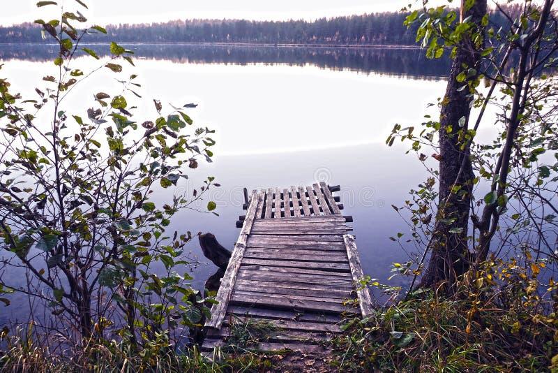 Landskap med träpir som förbiser skogsjön arkivbild