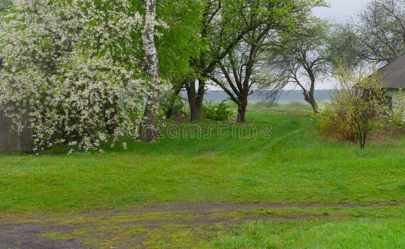 Landskap med vägar för en jord i lantligt ukrainskt område royaltyfria bilder