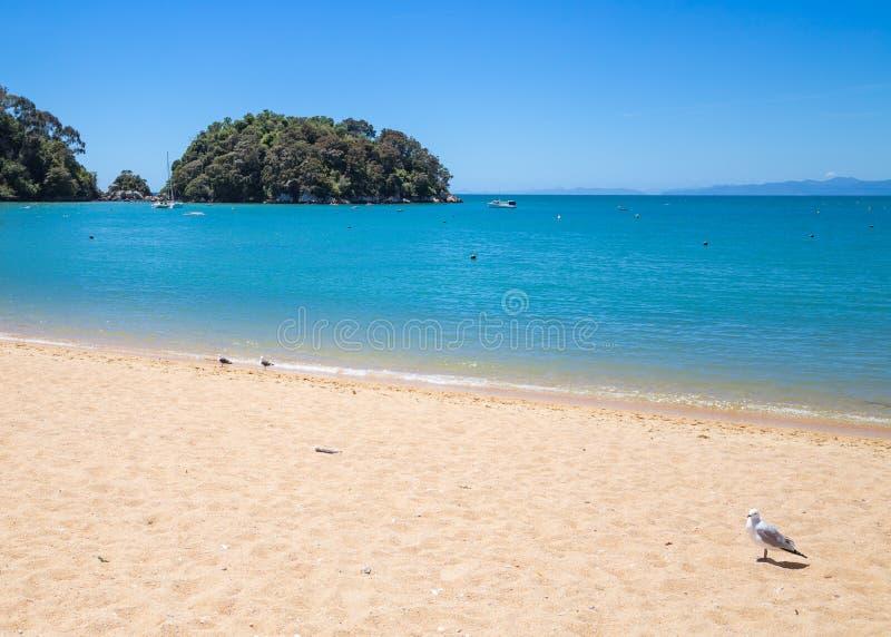 Landskap med vatten för sandig strand och turkosav havet, Ka royaltyfri fotografi