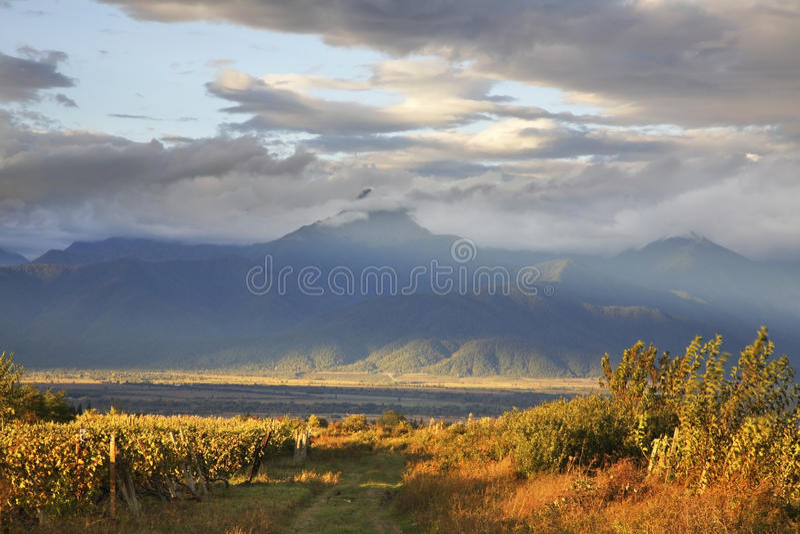 Landskap nära Ikalto (Iqalto) Kakheti georgia royaltyfri fotografi