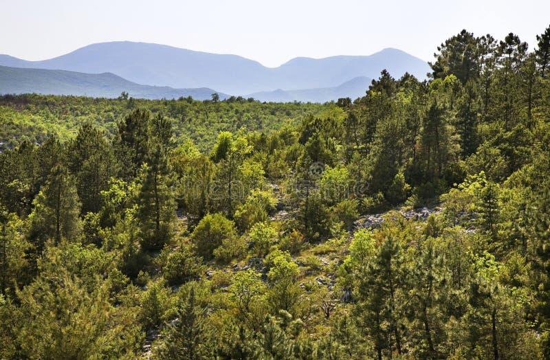 Landskap nära Studenci stämma överens områdesområden som Bosnien gemet färgade greyed herzegovina inkluderar viktigt, planera ut  arkivbilder