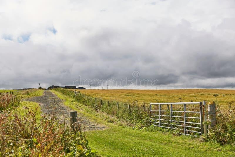 Landskap n?ra omr?de f?r John nolla-?gryn Nordliga viktig mest fastland av Skottland arkivbild