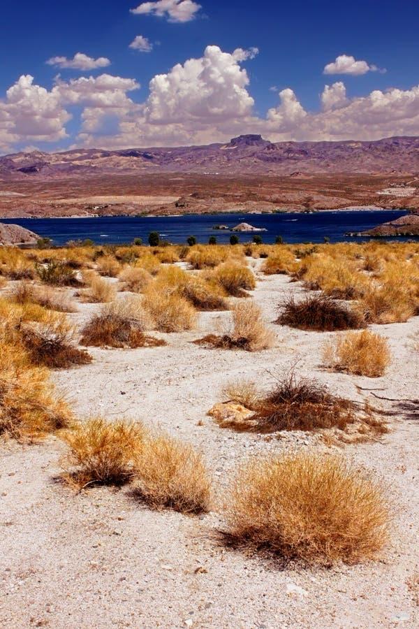 Landskap Nevada för sjöMohaveöken royaltyfria bilder