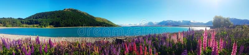 Landskap och den naturliga skönheten av den vidsträckta fotopanoraman arkivbild