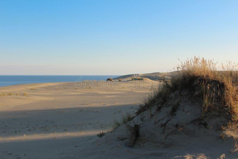 Landskap på de härliga dyerna för sand för Östersjön kust royaltyfri foto