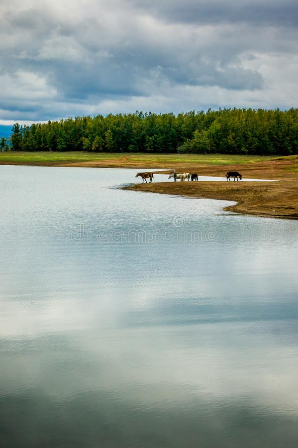 Landskap på sjön Plastira i Karditsa, Grekland royaltyfri fotografi