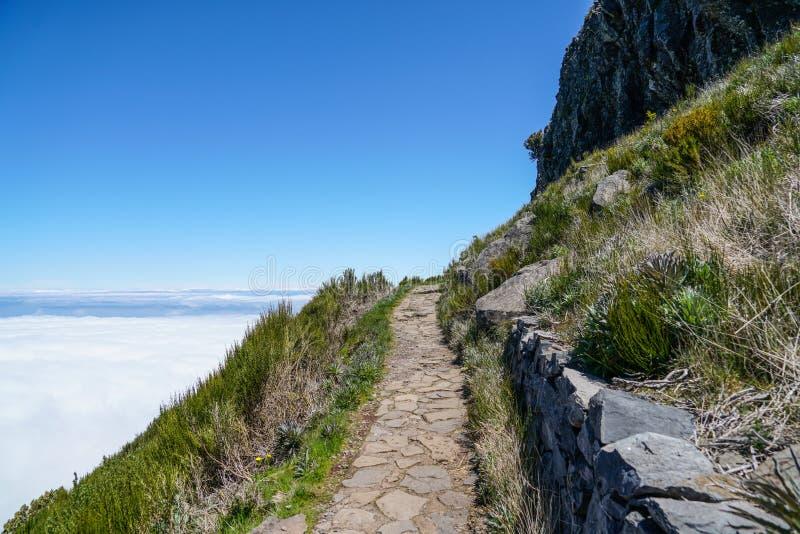 Landskap p? Pico de Ruivo i madeira arkivbilder